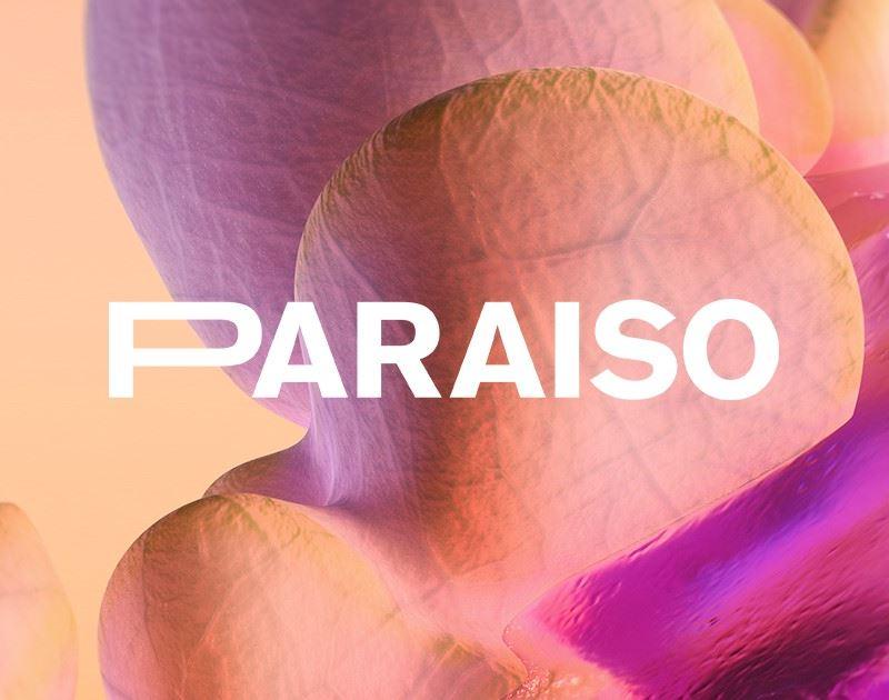 paraiso festival 2020