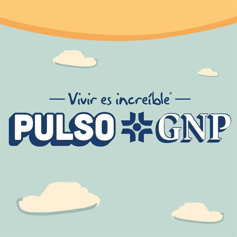 Pulso GNP 2021 1