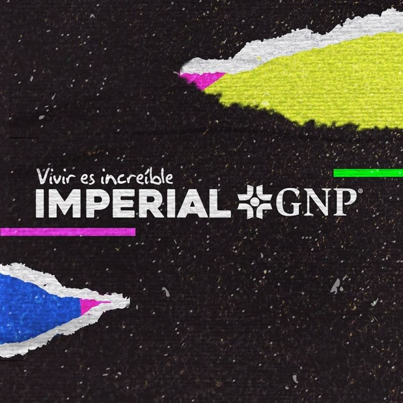 Imperial GNP 2020 1