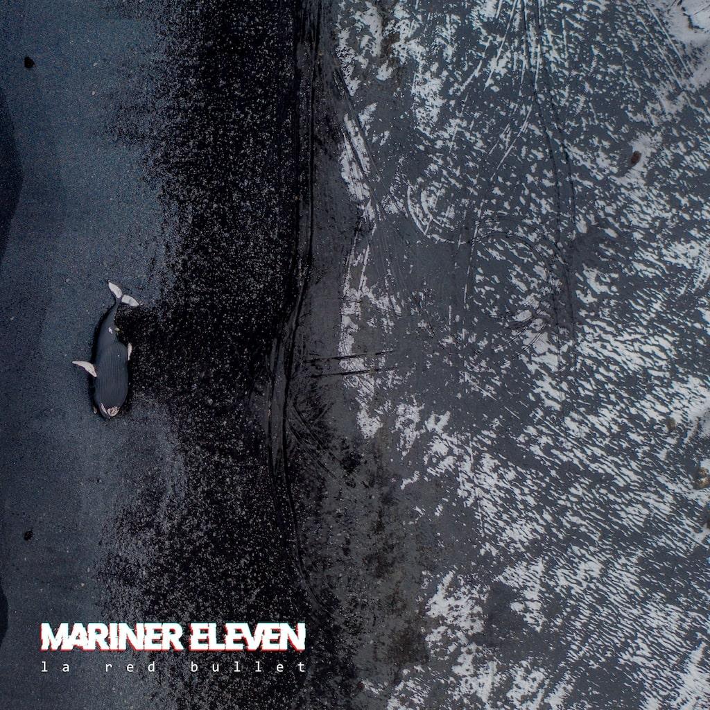 la red bullet mariner eleven